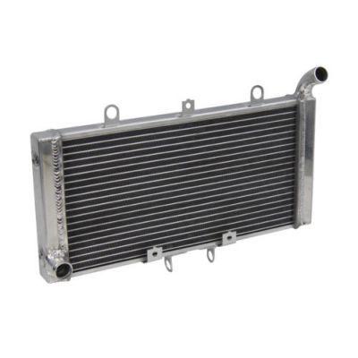 Радиатор для Honda CB 1300 03-08