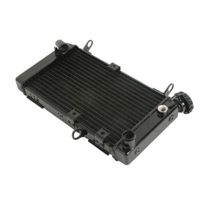 Радиатор для Suzuki SV 650 99-02