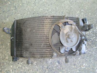 Радиатор для Honda CBR 600 F3